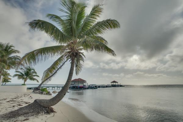 Beach and Docks